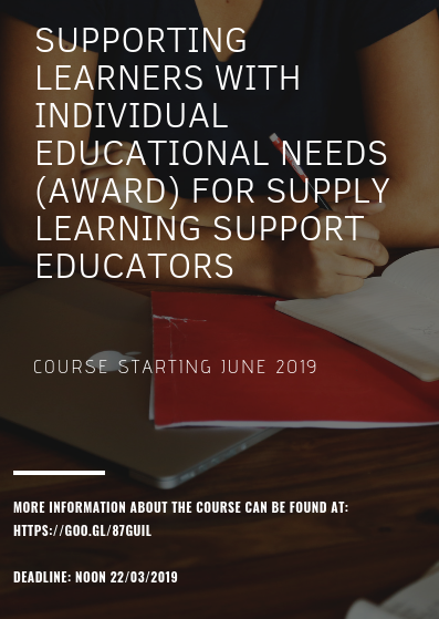 Supply Learning Support Educators (LSEs).png